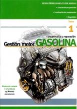 Gestión Motor Gasolina